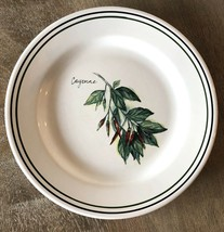 Williams-Sonoma Herbs Salad Plate CAYENNE Made in Portugal - $6.68