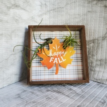 """Fall Decor Plaque, live air plants, Wooden shadow box, autumn leaf """"Happy Fall"""" image 6"""