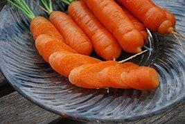 100 Seeds of Nantes Fancy Carrots - $15.84