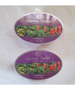 2 Colonial Candle Snaps/Tarts WILDFLOWERS for simmer pots - $7.00