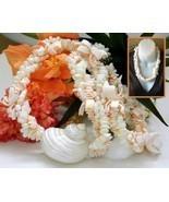 Vintage Seashell Necklace Sliced Sea Shell Chunky Cream Handmade Lei - €21,96 EUR