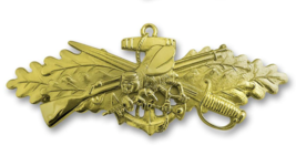Genuine U.S. Navy Badge: Seabee Combat Warfare Specialist Officer Pin Insignia - $19.78