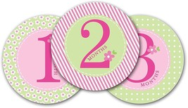 Pearhead First Year Monthly Milestone Photo Sharing Baby Belly Stickers,... - $18.37
