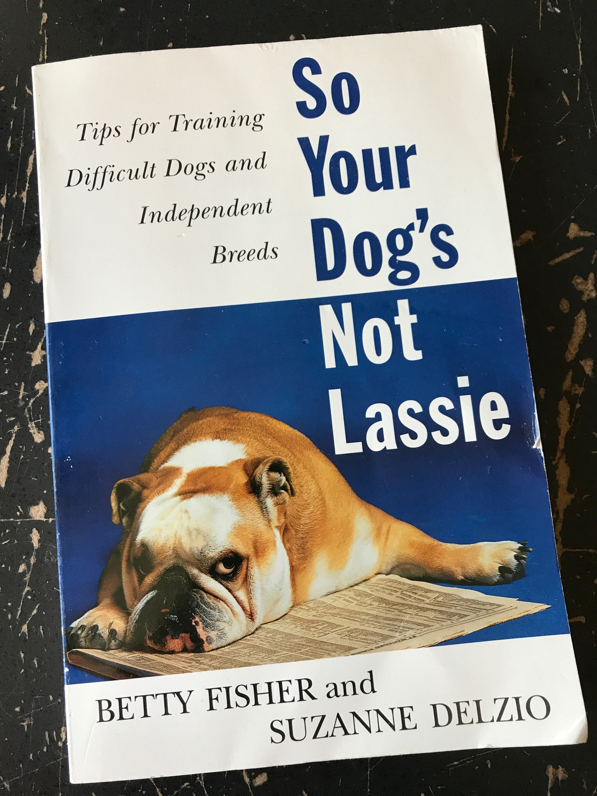 Primary image for So Your Dog's Not Lassie Fisher Delzio training tips for your dog excellent cond