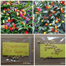 Spicy Pepper ''Ornamental'' Mix Colors ~30 Top Quality Seeds - Extra Productive - $13.58