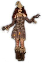 Forum Novelties Harvest Scarecrow Dress Adult Womens Halloween Costume 8... - $39.99