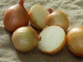 NON-GMO Texas Grano 502 Onion Seeds - 200 Seeds - $11.19