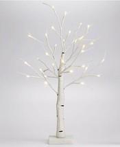 Holiday Lane 24″ Led Birch Tabletop Tree - $51.48
