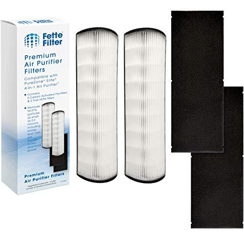 Fette Filter -Pack of 2 True HEPA Replacement Filters Compatible with Pure Enric
