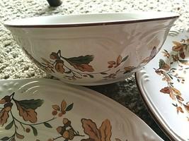"3 Pieces Pfaltzgraff Autumn Berry 10.5"" Dinner Plate; 8"" Salad; 5.75 Bowl NEW - $23.74"