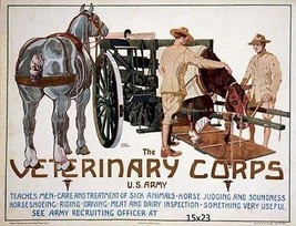 "Weltkrieg I Muster Schreck Veterinär Korps U.S.Army 40.6x53.3cmanimal Ambulanz "" - $16.85"