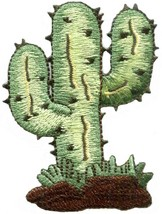 Cactus desert flower southwest embroidered applique iron-on patch new S-... - $2.95