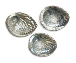 Large Abalone Shell ~ Pāua Shell ~ 13-15cm - $13.95