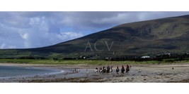 "West Coast Ireland Panoramic Photograph Ready For Framing ""Ventry Bay"" - $19.79"