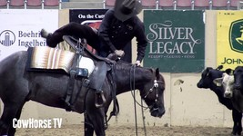 Clinton Anderson  DownUnder Horsemanship Horse Training 12 Courses - $118.80