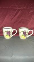 """Set of Hand Painted Mugs by K.I.C. """" Fresh Fruit ' - $27.00"""
