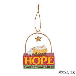 Primary image for God's Promise Ornaments