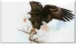 Bald Eagle Refrigerator Magnet #4 - $2.49