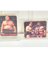 2 WWF WWE  Borden Titan Sports Tag Team of the Century 1988 Cards Sticke... - $14.84