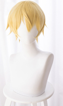 Sword Art Online: Alicization Eugeo Cosplay Wig Buy - $30.00