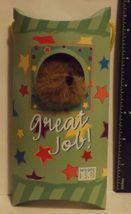Boyds Bear Plush Peek-A-Bear Greetings Great Job - $6.99