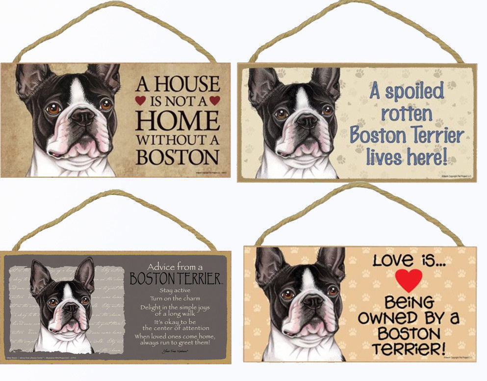 """Boston Terrier Dog Sign Plaque 10""""x5"""" House Home Spoiled Love Advices"""