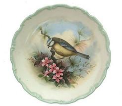 Royal Albert Woodland Birds Collection Blue Titmouse Plate Bird Plate CP... - $32.51