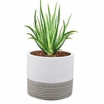 Brief Succulent Pots, 5 inch Diameter, 1 Pack Modern Cement Cactus Flowe... - $11.84