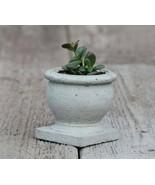 Succulent Concrete Planter Cement Small Handmade Flowerpot Home & Garden... - $26.95