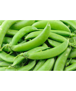 Pea Sugar Snap Non GMO Heirloom Garden Vegetable Seeds Sow No GMO® USA - $4.64+