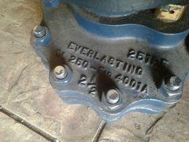 Everlasting Valve CL 250 fig 4001A image 3