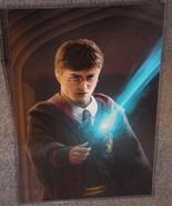 Harry Potter Glossy Art Print 11 x 17 In Hard Plastic Sleeve - $24.99