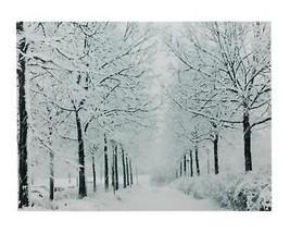 "Northlight Fiber Optic Snowfall Winter Lane Christmas Canvas Art 11.75"" ... - $34.64"