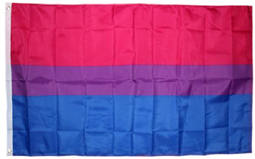 "12x18 12/""x18/"" Wholesale Combo Gay Pride Rainbow /& Bi Bisexual Stick Flag"