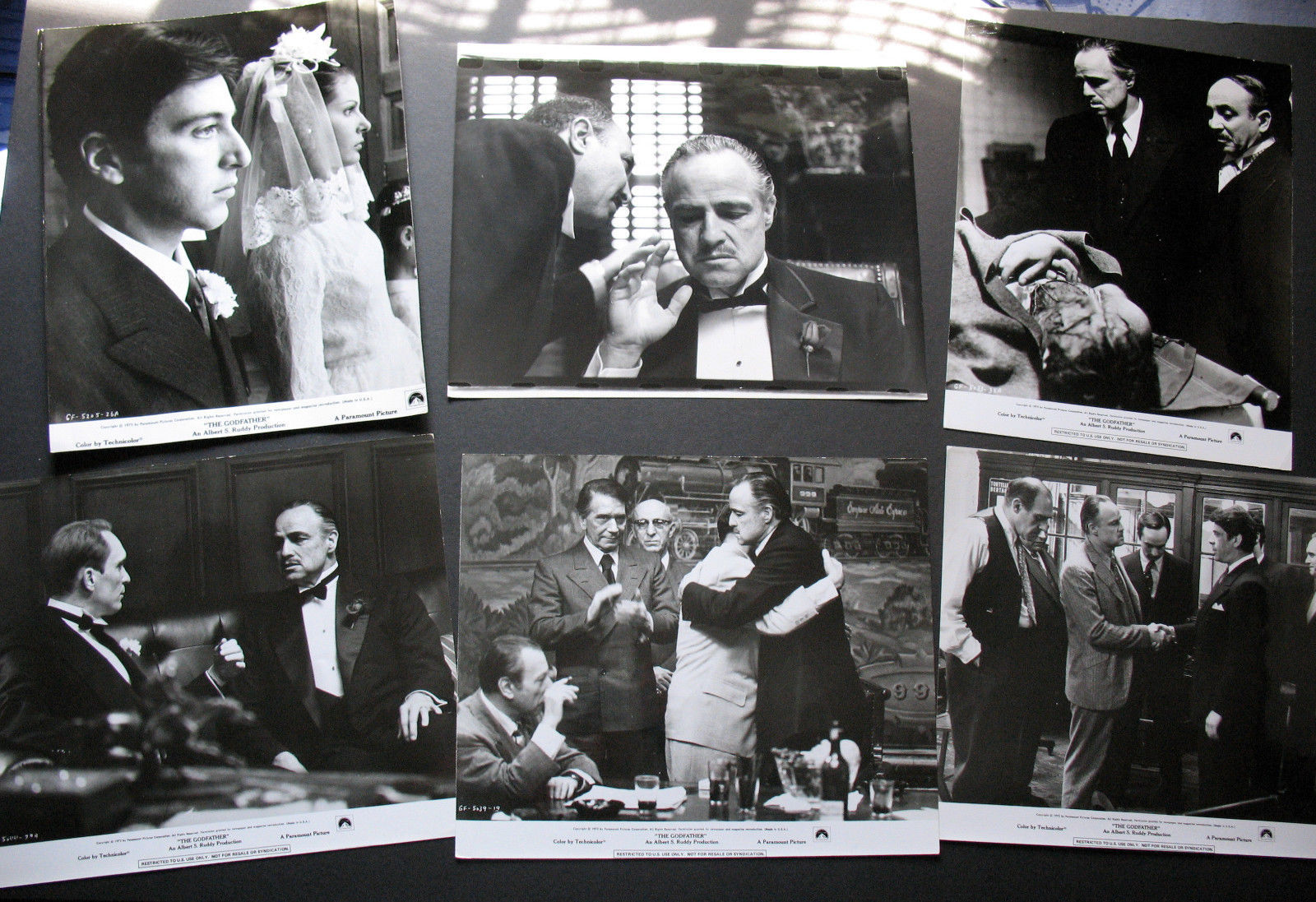 FRANCIS FORD COPPOLA (THE GODFATHER) ORIGINAL PHOTO LOT # 2