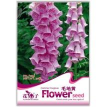 50 Seed Beautiful Pink Foxgloves Flower Seeds, DIY Healthy Herbs DO - £7.41 GBP