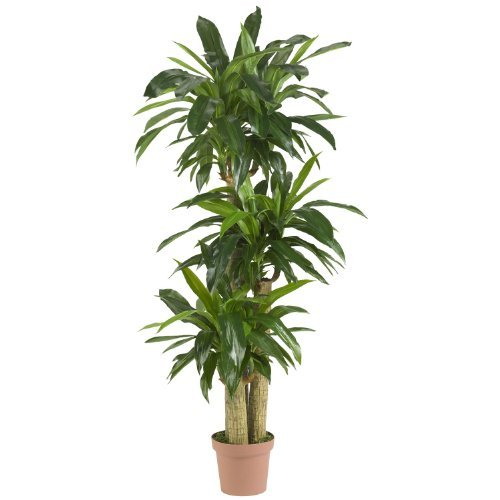 Primary image for Nearly Natural 57in. Corn Stalk Dracaena Silk Plant (Real Touch), Green
