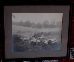 Nice VERY OLD Framed and Matted Photograph, VERY GOOD CONDITION - $29.69