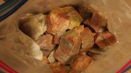 Arizona & Wyoming Petrified Wood Rough/Polished & Mixed Rock 26.6 lb Lot - $99.00