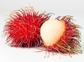 5 PCS Seeds of Rambutan Fruits Tropical Fruit Nephelium lappaceum Lychee - $15.11