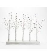 Illuminated Pip Berry Branch Centerpiece by Valerie  White  BA2 - $43.64