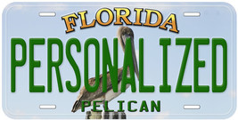 Pelican Florida Aluminum Any Name Novelty Car License Plate - $14.80