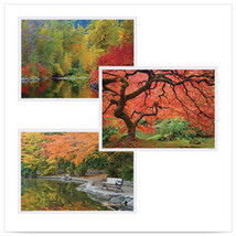 10 x 14 Multipack Fall Placemats with 3 Designs/Case of 1000 - $122.55