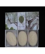 La Florentina Tuscan Olive Box of 3 150 g Bar Soaps  - $19.99