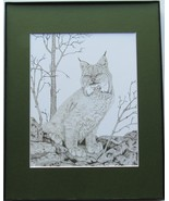Lynx, Bob Cat, Wild Cat Framed Matted Wildlife Art Print, Pen and Ink, A... - $39.00