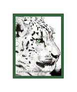 Snow Leopard Pen and Ink Print - $24.00
