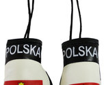 Poland boxing gloves 3 thumb155 crop