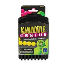Educational Insights Kanoodle Genius - $14.84