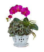 Mini Phalaenopsis Orchid and Succulent in Planter - $55.50