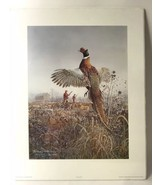 Scott Zoellick Print Rise And Shine Signed And Numbered Pheasant Hunting... - $126.09